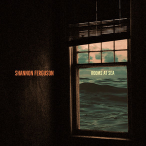 Shannon Ferguson - Standing Waves