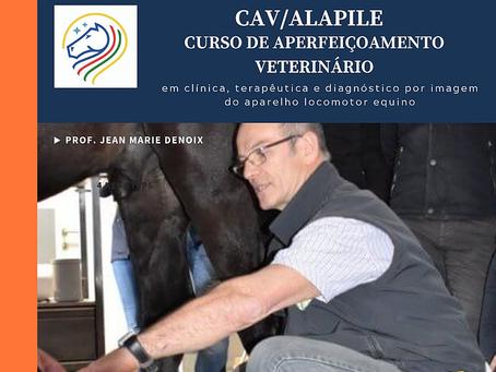 Curso CAV/ALAPILE com o Prof. Dr. Denoix