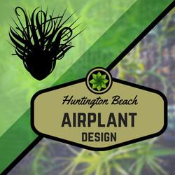 AirplantSticker
