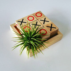 Airplants go good with Tic Tac Toe_#familiytime_#tictactoe _#familygames_#airplant _#airplantdesigns