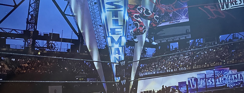HBK Shawn Michaels Autographed A3 Poster