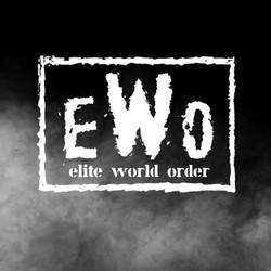 Elite World Order (Figures & Belts)