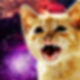 cat stamp.jpg