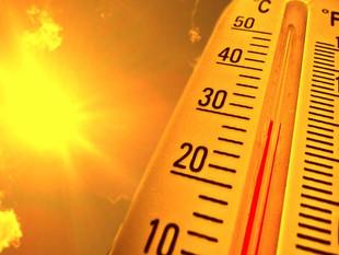 El año 2018, el cuarto más cálido del planeta desde que existen registros.