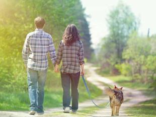 Caminar ayuda a ser más creativo