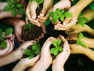 18 de octubre se conmemora el Día Mundial de la Protección de la Naturaleza