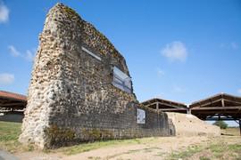 Mur de la palestre nord