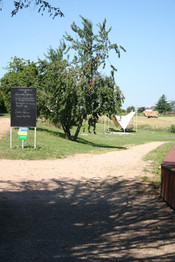 Chemin du parc