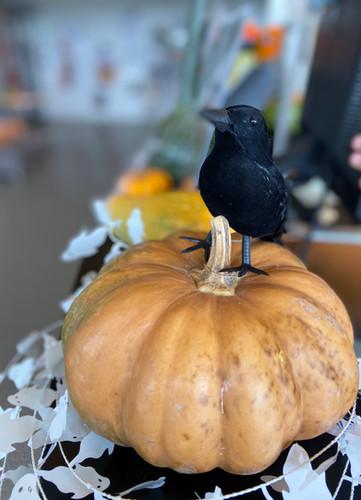 Décoration pour Halloween 2019