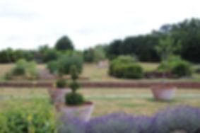 JardinPline ©Lili-ALFRAN.jpg