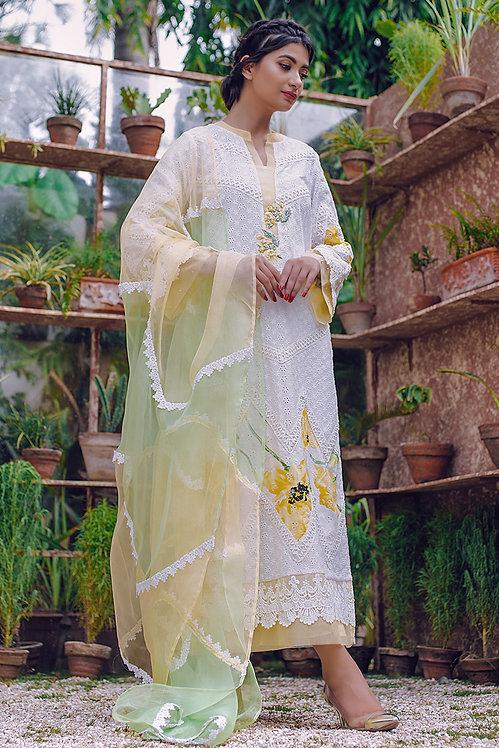 Afroze - Zainab Salman