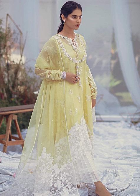 Aurora Peshwas - Zainab Salman