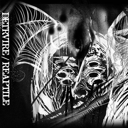 DETRVIRE/Reaptile Split 2020 K7