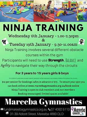 Ninja Training Christmas 2020.png