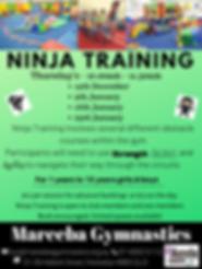 Ninja Training Dec-Jan.png
