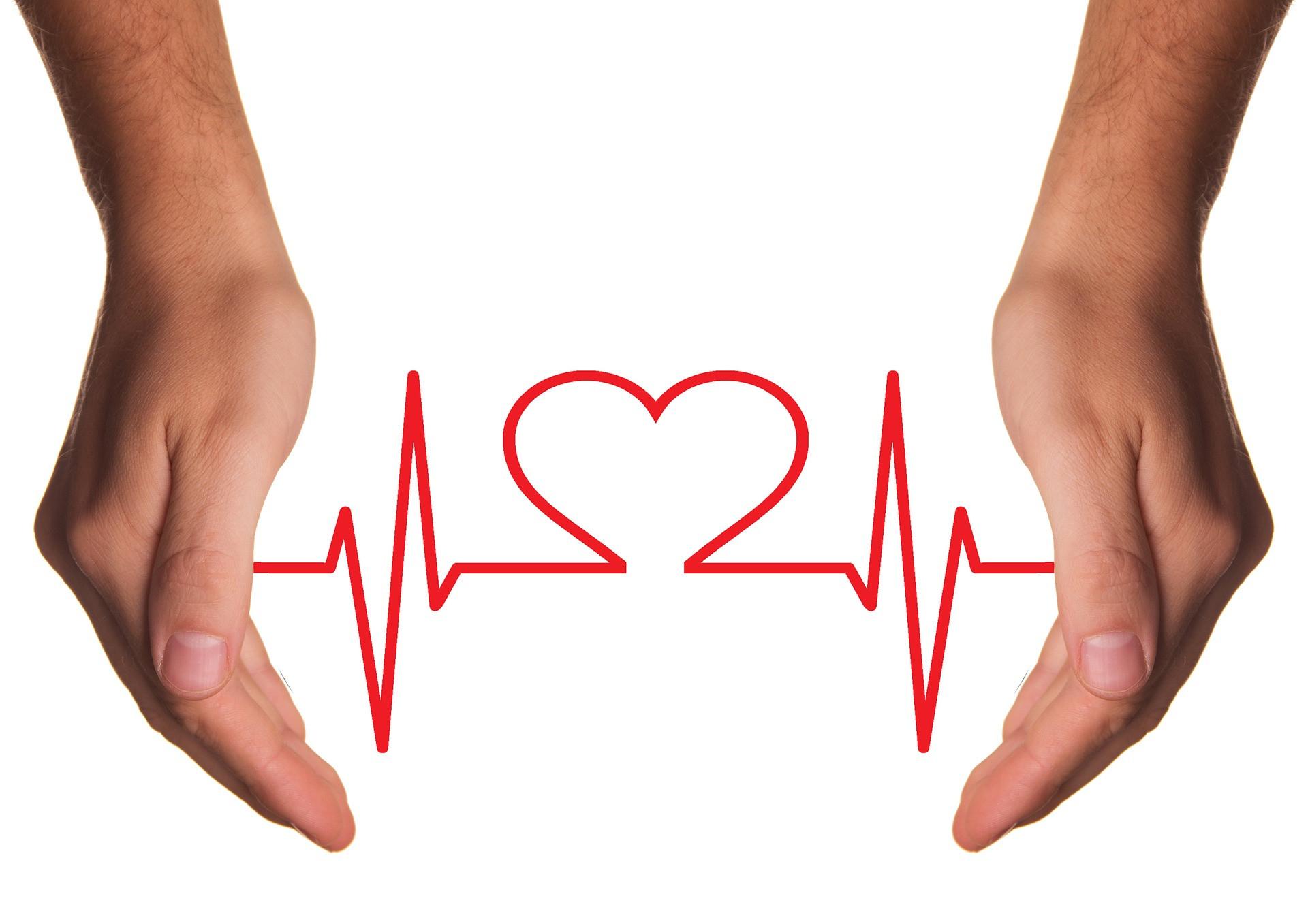 Bilan de santé holistique