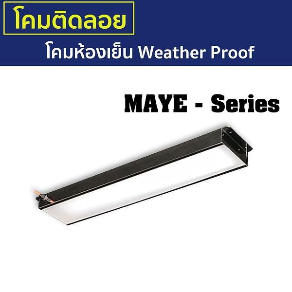 MAYE-Series.png