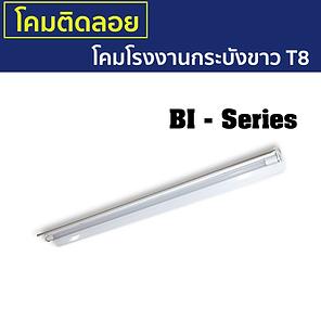 BI-Series-กระบังขาว.png
