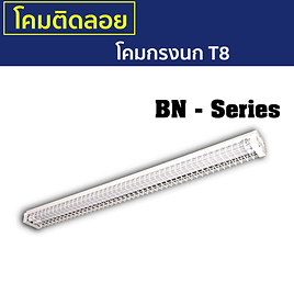 BN-Series.png
