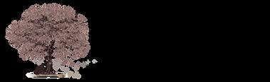 Logotipo Principal Horizontal_modelo 2 (