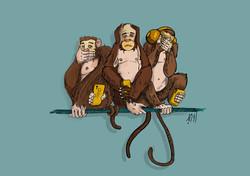 Monkey- Roozbeh-Jafarzadeh 01