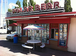 Polar Bear Photo.jpg