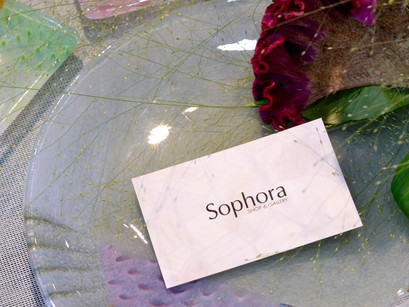 【本日、Sophora 13th anniversary!】