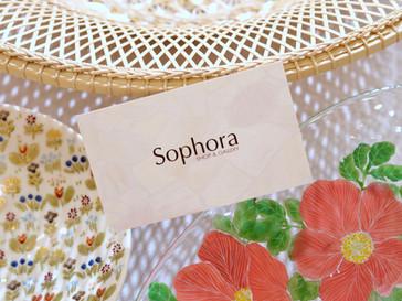 Sophora 12th Anniversary!
