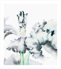 Eros XIX - Flourish