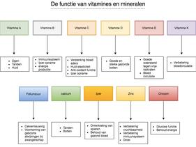 Vitamines en Mineralen | De functies