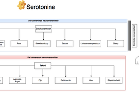 Serotonine - Wat is het en hoe werkt deze neurotransmitter?