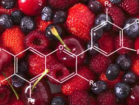 Anthocyaan | De manieren waarop dit unieke plantenpigment vecht voor een goede gezondheid