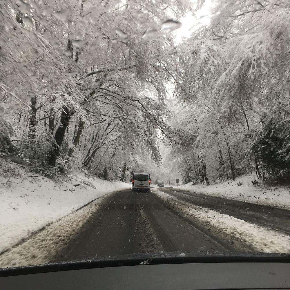Driving in a Winter Wonderland!