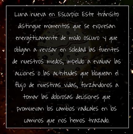 Luna Nueva en escorpio .png Juanita Inco