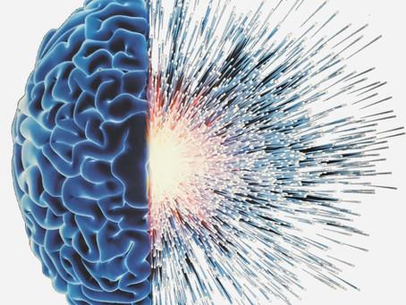 Los Cuatro Componentes para alcanzar el Éxito desde la Neurociencia y la Astrología en los Negocios