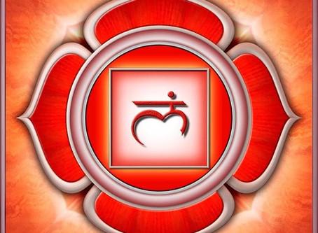 Muladhara Chakra. La energía raíz de la vida.