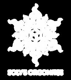 SolysOrgonitesLogoFeb2017_RGB_blanco.png