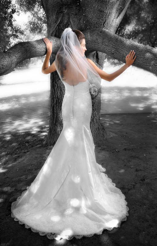 1042-CAROLYN-NICK-WEDDING-0007