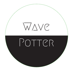 wavepotter, wave potter, wave potter music, independent music, indie music, local musician, Minneapolis band, classic rock