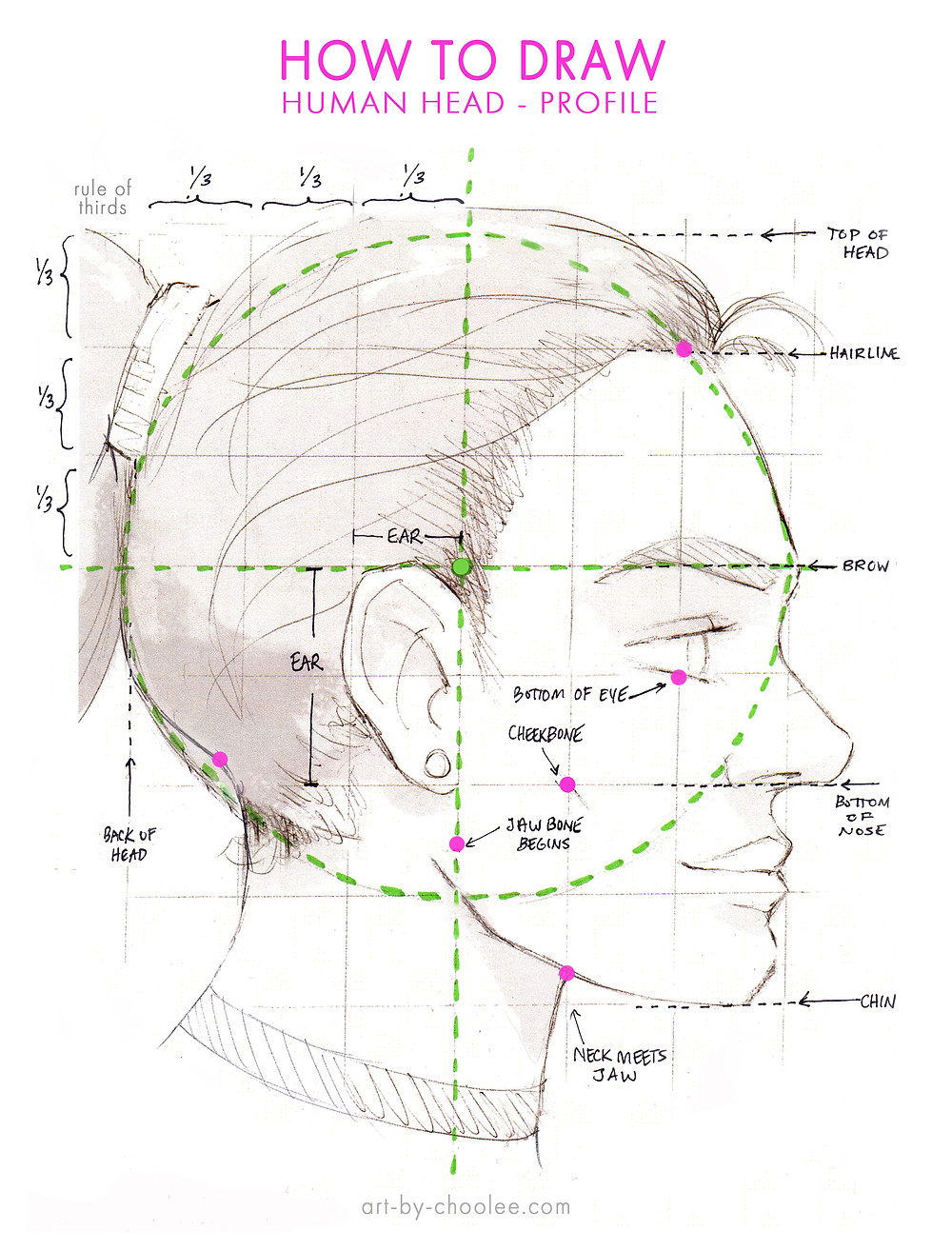 how to draw, how to draw the human head, diagram of human head