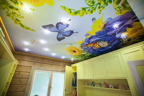 фотопечать, фотопечать на потолке, картинка на потолке, картина на потолке, фото на потолке, необычный потолок, оригинальное решение, оригинальный потолок,