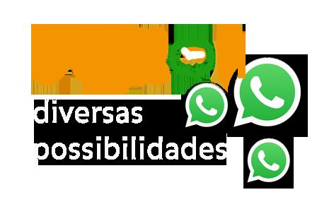 pigeon-diversas-possibilidades.png