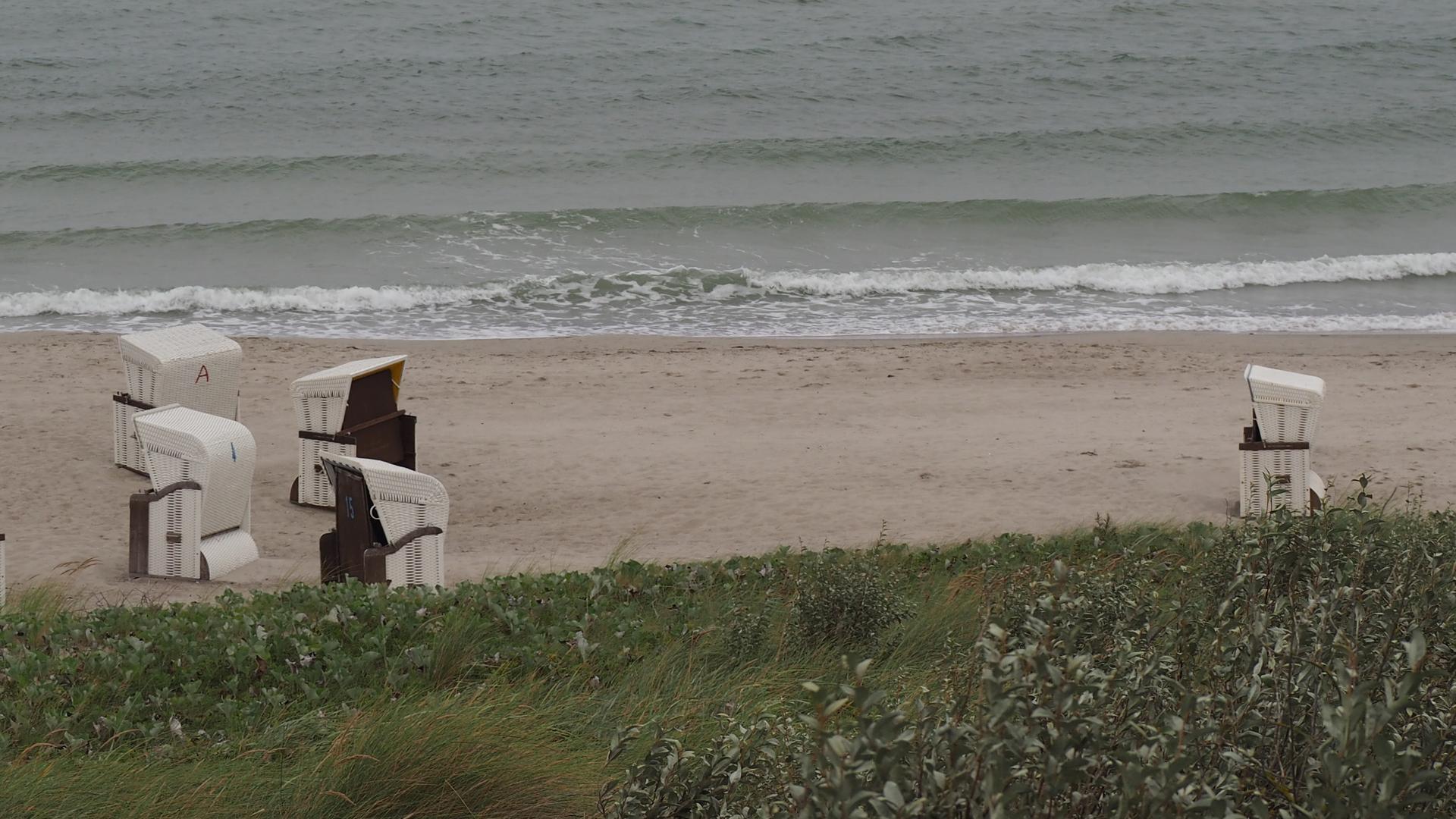 Strandkörbe am Strand.png