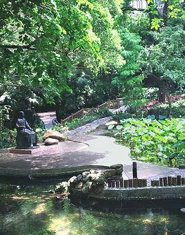 HKU Lotus pond SYS.jpg