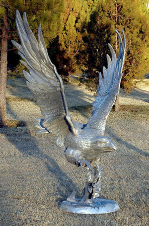 Large Flying Eagle with Fish