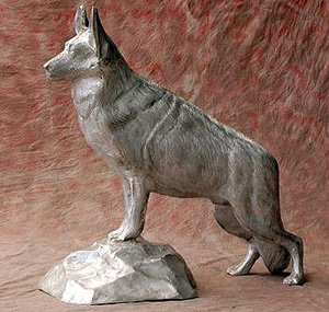 German Sheppard Dog On Rock