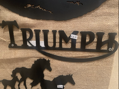 Steel Art Silhouettes Triumph Logo Straight