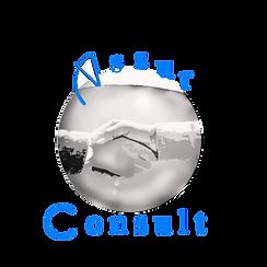 Assur Consult