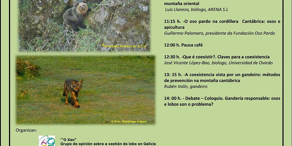 Coexistencia da gandería extensiva e a produción apícola co lobo e o oso