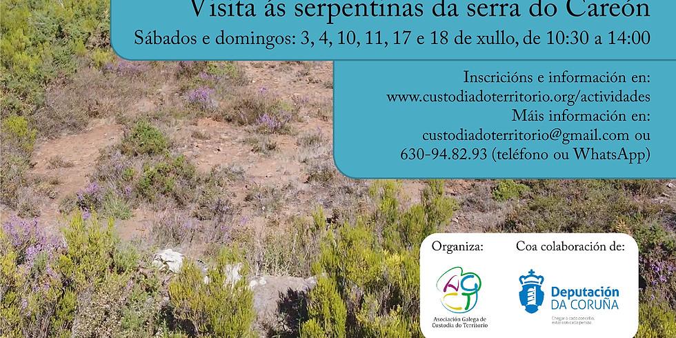 Endemismos do centro de Galicia: visita ás serpentinas da serra do Careón